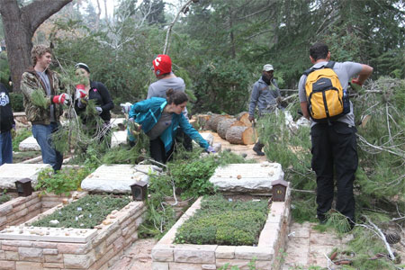 Birthright Cleans up Mt Herzl Cemetery